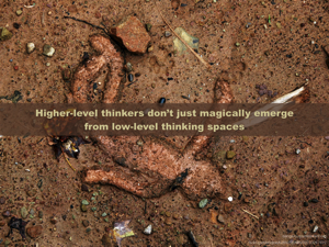 Higher level thinkers do not just magically emerge